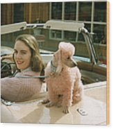 Woman & Her Poodle Wood Print