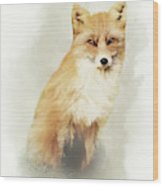 Woodland Fox Portrait Wood Print