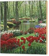 Woods And Stream, Keukenhof Gardens Wood Print