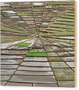 Working The Spiderwebs Wood Print