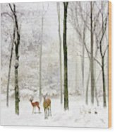 Forest Winter Visitors Wood Print