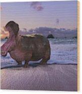 Yawning Coastal Hippo Hello Wood Print