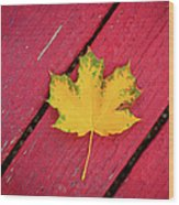 Yellow Maple Leaf Against A Red Deck Wood Print