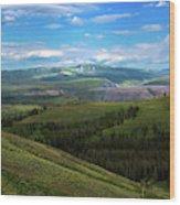 Yellow Stone National Park Where Bears Live  Wood Print