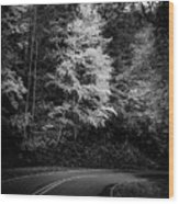 Yellow Tree In The Curve In Black And White Wood Print