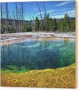 Yellowstone Hot Spring Wood Print