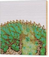 Yemen Chameleon, Close-up Of Skin Wood Print