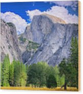 Yosemite National Park California Wood Print