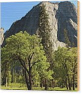 Yosemite Valley Serenity Wood Print
