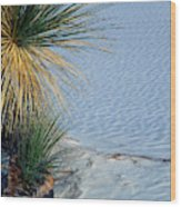 Yucca Plant In Rippled Sand Dunes In White Sands National Monument, New Mexico - Newm500 00113 Wood Print