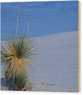 Yucca Plant In Sand Dunes In White Sands National Monument, New Mexico - Newm500 00112 Wood Print