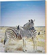 Zebra Mother And Her Foal In Etosha Wood Print