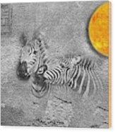 Zebras No 02 Wood Print