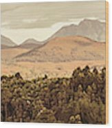 Zeehan And Beyond Wood Print