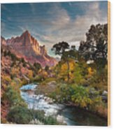 Zion And The Wood Print