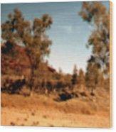Daintree Australia Wood Print