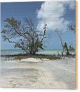 Key West Waters Wood Print