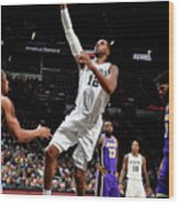 Lamarcus Aldridge Wood Print