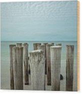 Naples Pilings 2021 Wood Print