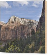 Trees in Zion National Park Wood Print