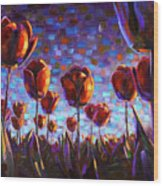 Tulips at Dawn Wood Print