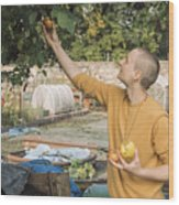 Young woman picking apples Wood Print
