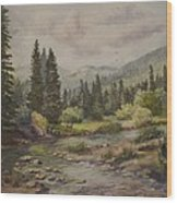 A Rockey Mountain Stream Wood Print