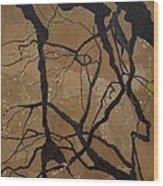 Arboretum Dancers Wood Print