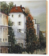 Banks Of The Rhine Wood Print