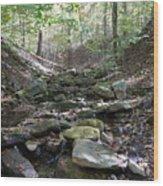 Bark Rocks 6 Wood Print