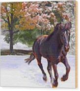 Black Stallion In Fall Snow Fantasy Art Wood Print