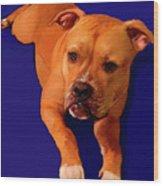 Boxer Portrait Wood Print