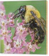 Bumble Bee Queen Wood Print