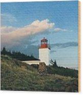 Cape D'Or Wood Print