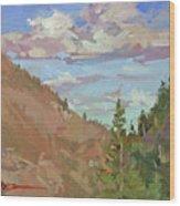 Carson Canyon Wood Print