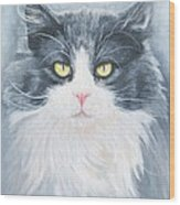 Cat Print Pet Portrait Artist For Hire Commission Wood Print
