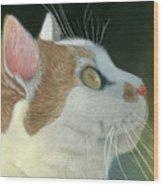 Cat Portrait Pastel Painting Wood Print