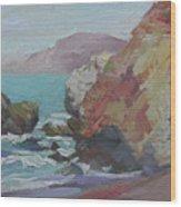 Cottonwood Cove Catalina Wood Print