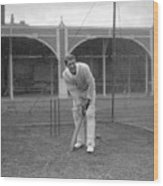 Cricket - South Africa in British Isles - South Africa Nets - Lord's Wood Print