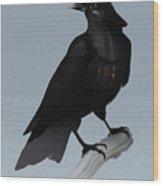 Crow Vader Wood Print