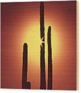 Encinitas Cactus Wood Print