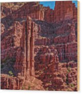 Fisher Towers Wood Print