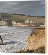 Freshwater Bay panorama Wood Print