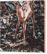 Garden Ornament Wood Print