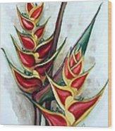 Heliconia Tropicana Trinidad Wood Print