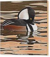 Hooded Merganser On Colorful Water Wood Print