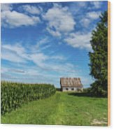 Indiana Barn #189 Wood Print