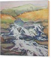 Ireland Highland Stream Wood Print