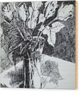 Just  Roses   copyrighted Wood Print
