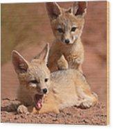 Kit Fox Twin Pups Wood Print